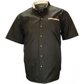 Vêtements Homme Chemises manches courtes Doublissimo chemisette oxford inverness marron Marron