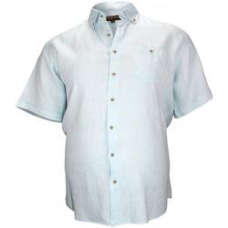 Vêtements Homme Chemises manches courtes Doublissimo chemisette en lin monte carlo vert Vert
