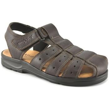 Chaussures Homme Sandales et Nu-pieds Morxiva Shoes  Marron