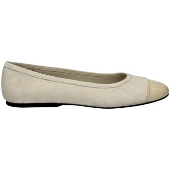 Chaussures Femme Ballerines / babies Campanile CC10 BLANC