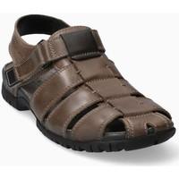 Chaussures Homme Sandales et Nu-pieds Mephisto BASILE Gris Marron