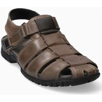 Chaussures Homme Sandales et Nu-pieds Mephisto BASILE cuir BASILE Marron