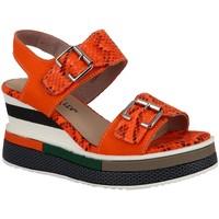 Chaussures Femme Sandales et Nu-pieds Laura Vita dacddyo 271 orange