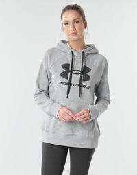 Vêtements Femme Sweats Under Armour RIVAL FLEECE LOGO Gris