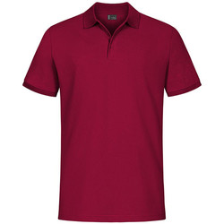 Vêtements Homme Polos manches courtes Promodoro EXCD Polo grandes tailles Hommes rouge grenade