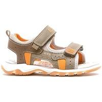 Chaussures Garçon Sandales et Nu-pieds Bopy TAXEO vert