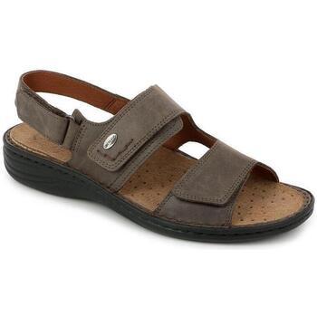 Chaussures Homme Sandales et Nu-pieds Grunland DSG-SE0066 MARRONE