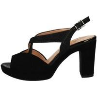 Chaussures Femme Sandales et Nu-pieds Soffice Sogno E20323 NOIR
