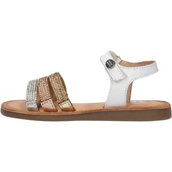 Chaussures Garçon Chaussures aquatiques Gioseppo - Sandalo bianco HIALEAH BIANCO