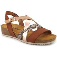 Chaussures Femme Sandales et Nu-pieds Carla Tortosa 27006 Marron