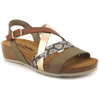 Chaussures Femme Sandales et Nu-pieds Carla Tortosa 27006 Vert