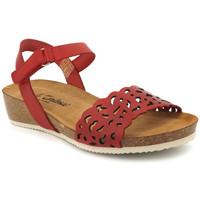 Chaussures Femme Sandales et Nu-pieds Carla Tortosa 27149 Rouge