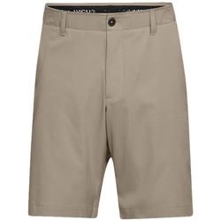 Vêtements Homme Shorts / Bermudas Under Armour Short Beige
