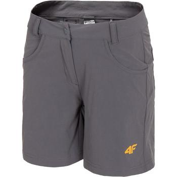 Vêtements Femme Shorts / Bermudas 4F Women's Functional Shorts H4L20-SKDF060-23S