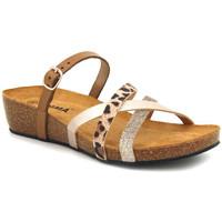 Chaussures Femme Sandales et Nu-pieds Emma Shoes 8956 Combi Marron