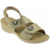 Chaussures Femme Sandales et Nu-pieds Inblu NF 19 Sandales Multicolore
