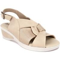 Chaussures Femme Sandales et Nu-pieds Arcopedico HERA PIEL BEIG Sandalias