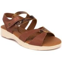 Chaussures Femme Sandales et Nu-pieds Arcopedico VENEZIA PIEL MARRON Sandalias