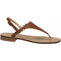 Chaussures Femme Sandales et Nu-pieds Paolo Ferrara CUOIO NATURALE cuoio