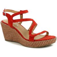 Chaussures Femme Sandales et Nu-pieds Adige FERGUIE PAVOT
