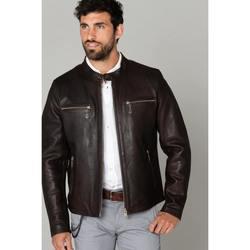 Vêtements Homme Vestes en cuir / synthétiques Daytona TRITON COW VEG REDDISH BROWN Marron