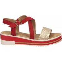 Chaussures Femme Sandales et Nu-pieds IgI&CO DPY 51890 rosso