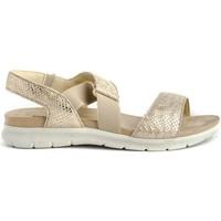 Chaussures Femme Sandales et Nu-pieds Imac 508560 Doré