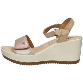 Chaussures Femme Sandales et Nu-pieds IgI&CO 51794/00 LE SABLE