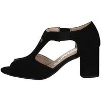 Chaussures Femme Sandales et Nu-pieds Comart 7C3343 Noir