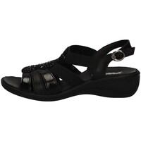 Chaussures Femme Sandales et Nu-pieds Imac 508830 NOIR