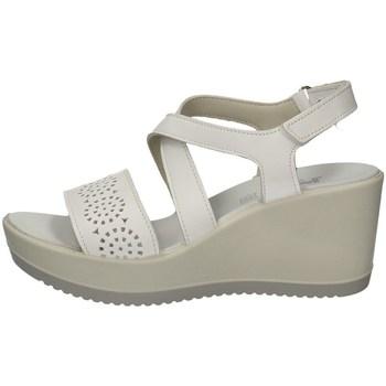Chaussures Femme Sandales et Nu-pieds Imac 508420 BLANC