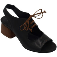 Chaussures Femme Sandales et Nu-pieds Angela Calzature AANGC4804nr nero