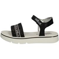 Chaussures Femme Sandales et Nu-pieds GaËlle Paris G-310 NOIR