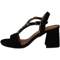 Chaussures Femme Sandales et Nu-pieds Annalu' 3PRS04E0 NOIR