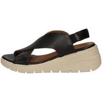 Chaussures Femme Sandales et Nu-pieds Annalu' 2HSP05E0 NOIR