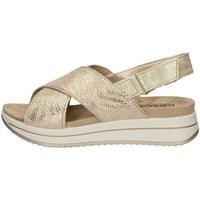 Chaussures Femme Sandales et Nu-pieds IgI&CO 51743/22 OR