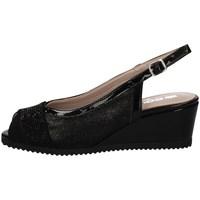 Chaussures Femme Sandales et Nu-pieds Comart 022889 Noir