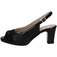 Chaussures Femme Sandales et Nu-pieds Comart 323320 Noir