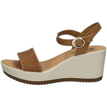 Chaussures Femme Steven New York Imac 508410 BEIGE