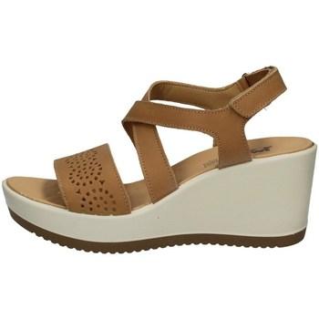Chaussures Femme Sandales et Nu-pieds Imac 508420 BEIGE