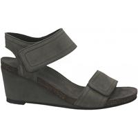 Chaussures Femme Sandales et Nu-pieds Ca Shott SUEDE grigio-chiaro
