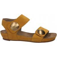 Chaussures Femme Sandales et Nu-pieds Ca Shott SUEDE sole