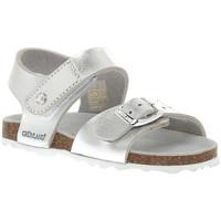 Chaussures Fille Sandales et Nu-pieds Grunland ARGENTO 40ARIA Grigio