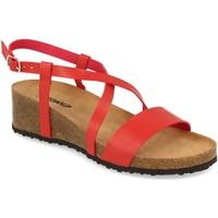Chaussures Femme Sandales et Nu-pieds Tony.p BQ03 Rojo