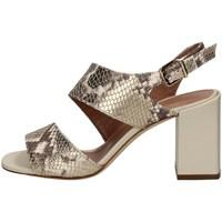 Chaussures Femme Sandales et Nu-pieds Gianmarco Sorelli 1978/BUY PLATINE