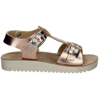 Chaussures Fille Sandales et Nu-pieds Lelli Kelly LK 1592 ROSE