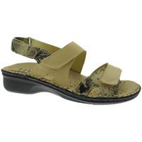 Chaussures Femme Sandales et Nu-pieds Calzaturificio Loren LOM2833ta tortora