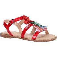 Chaussures Fille Sandales et Nu-pieds Pepe jeans PGS90120 ELSA FLOWER Rojo