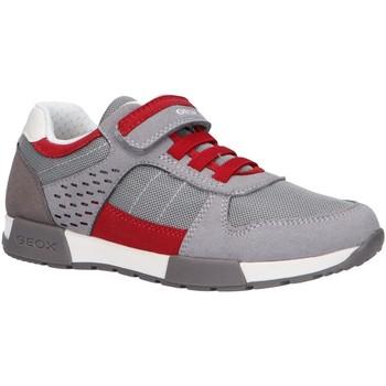 Chaussures Enfant Multisport Geox J826NA 014AF J ALFIER Gris