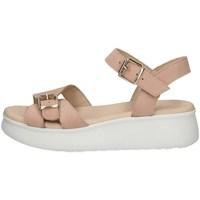 Chaussures Femme Sandales et Nu-pieds Lumberjack SW83306-002 ROSE